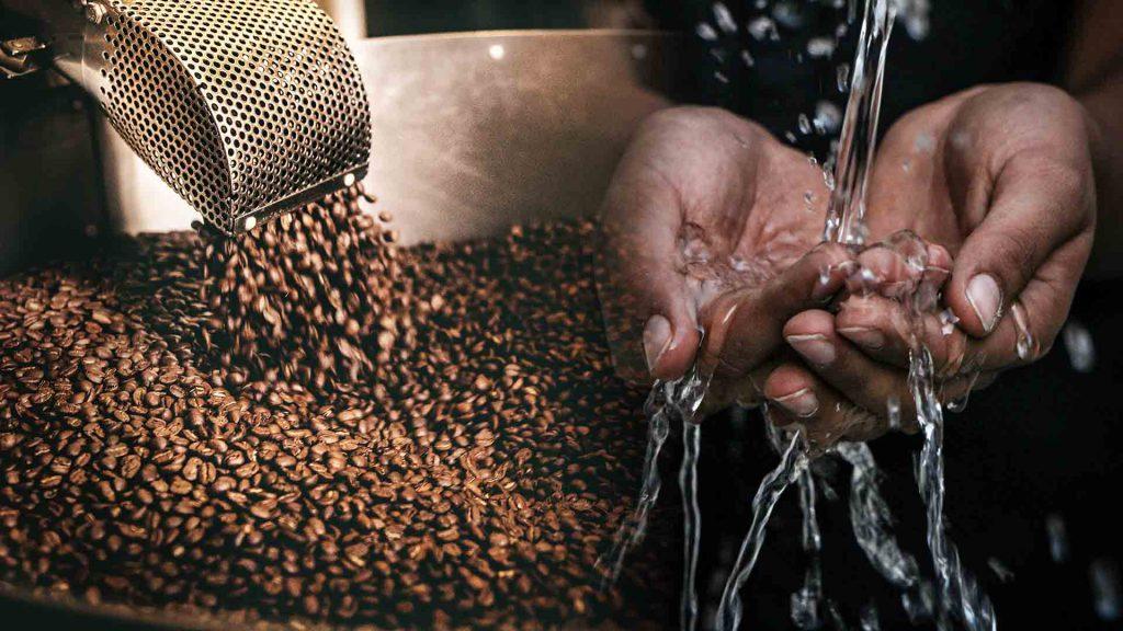 urban-nutters-cover-taste-appreciation-coffee-roasting