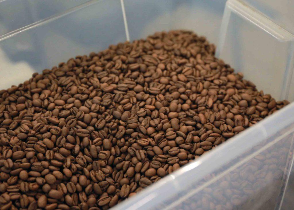 urban-nutters-interview-story-coffee-roaster-beans-honduras-elsavador-bryan-raku